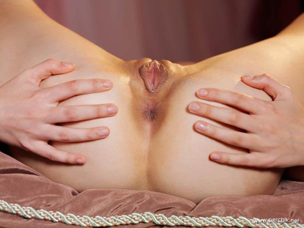 Clasificadox-fotos-ginecologia- (1)